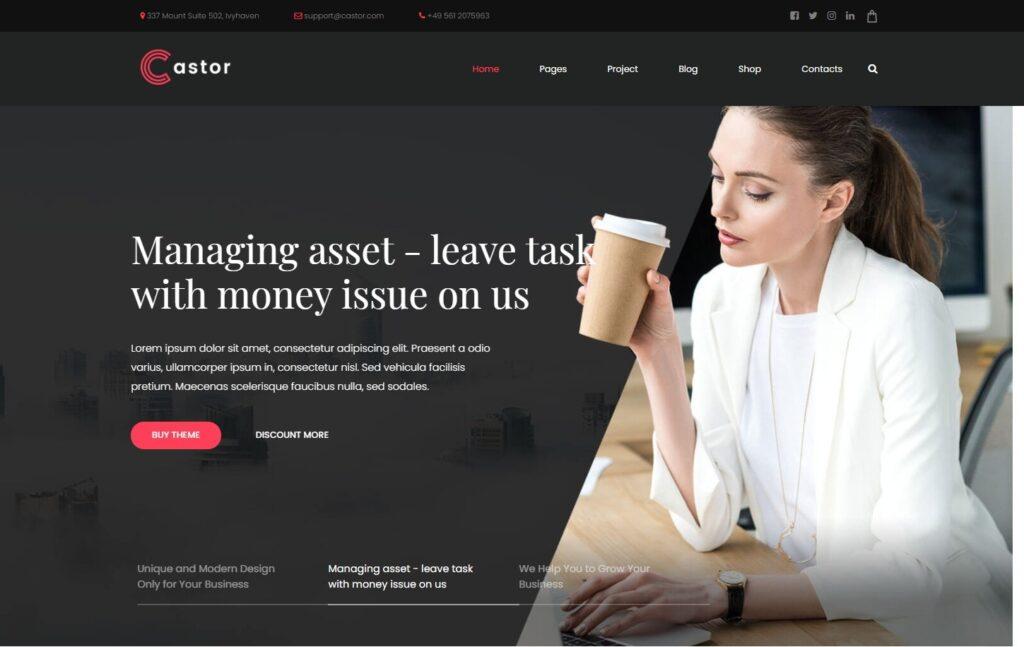 Castor Premium Quality WordPress Business Theme