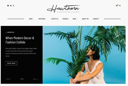 Lifestyle Blog WordPress Themes