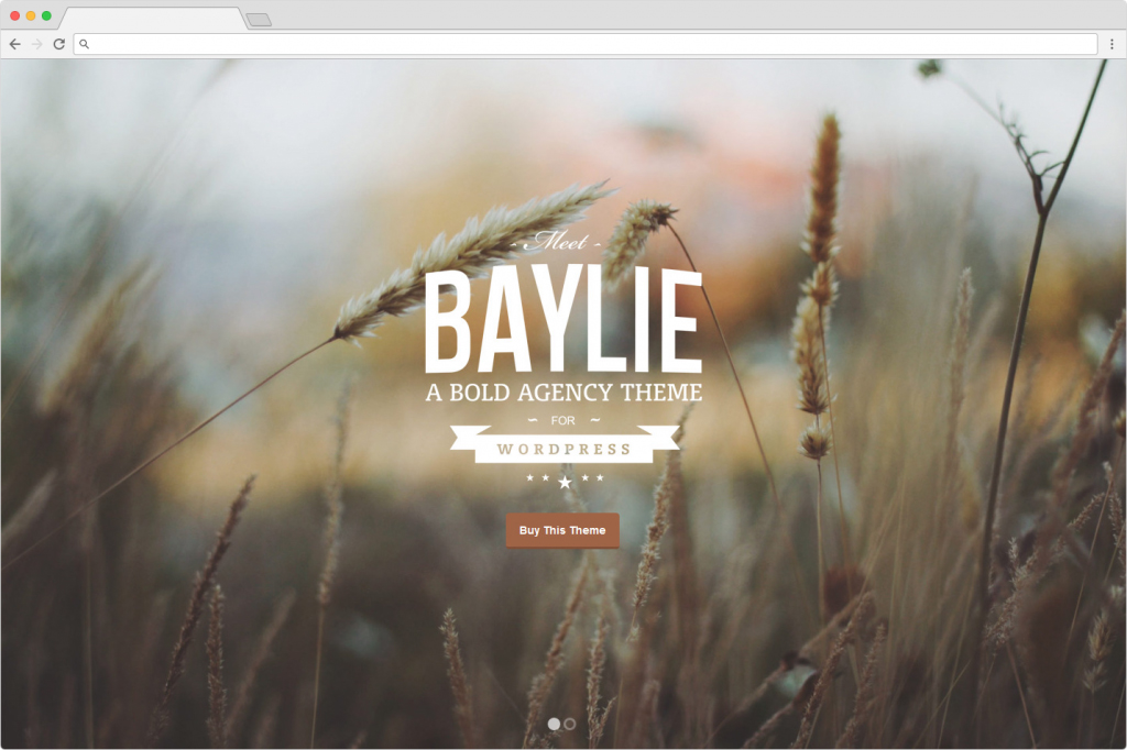 Baylie WordPress Creative Agency Themes
