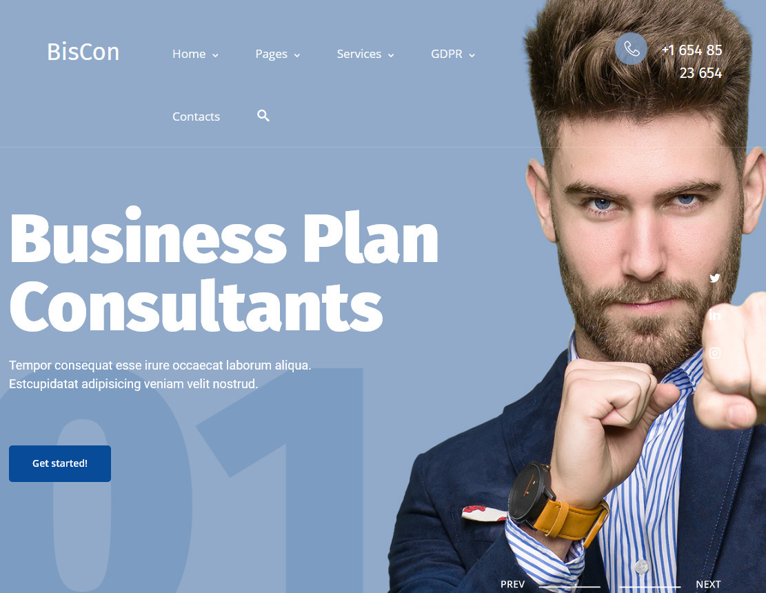 Biscon Business Consulting Services