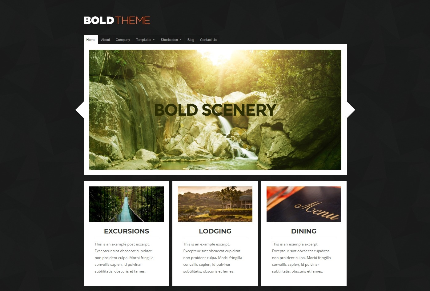 Bold WordPress Theme with Simple Boxed Slider