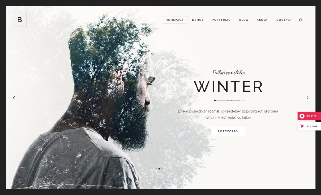 Borderland Clean User Friendly Portfolio Theme