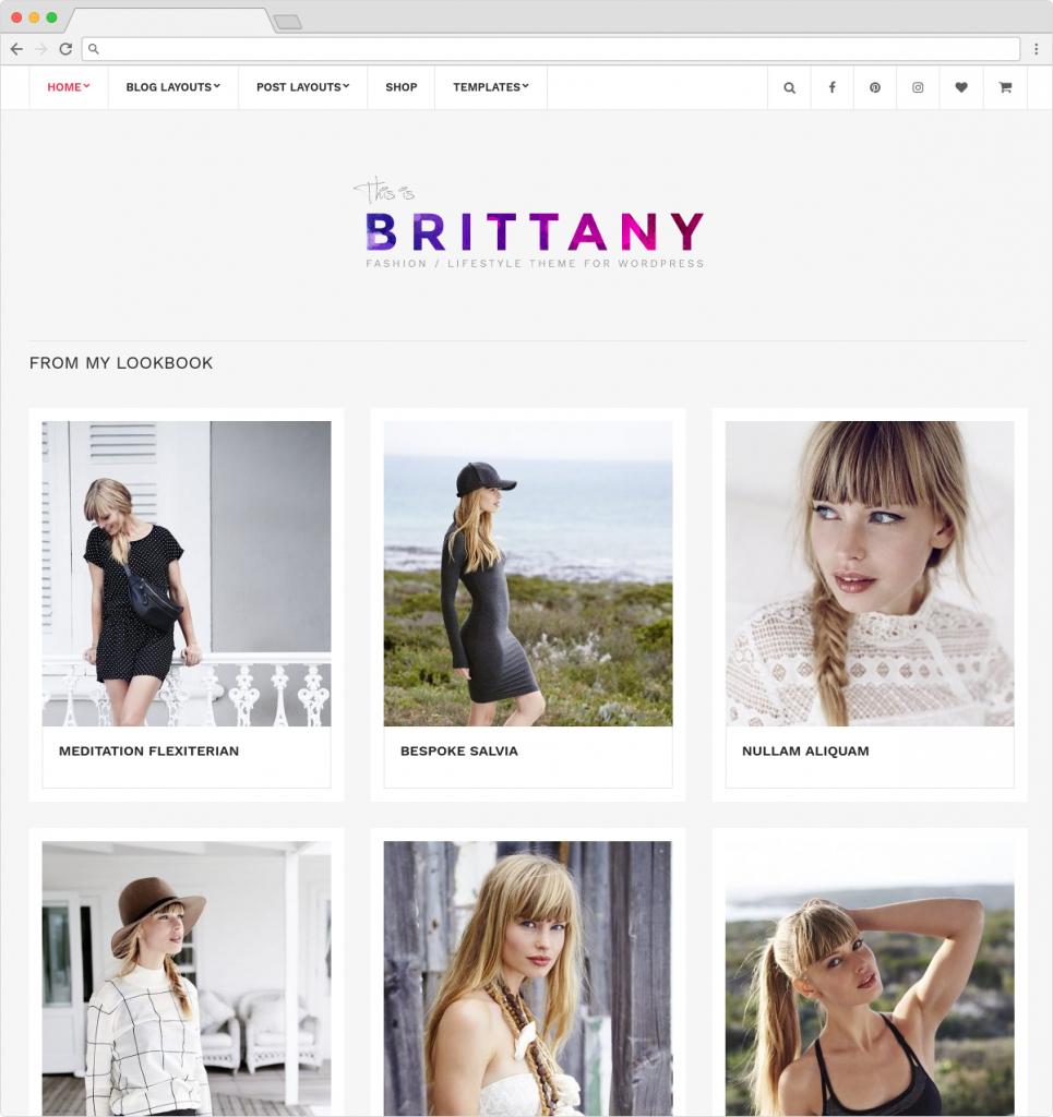 Brittany Minimalistic WordPress WooCommerce Shopping Theme