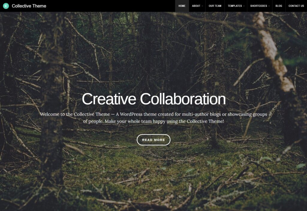 Collective Theme Creative Collaboration and Personal Blog Theme