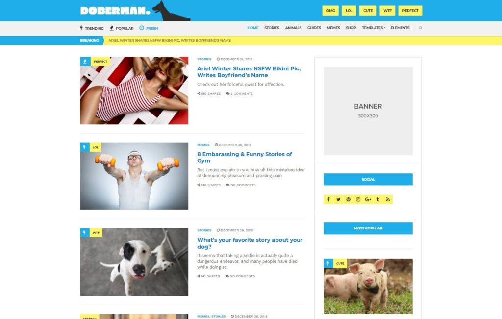 Doberman Personal Magazine Theme for WordPress
