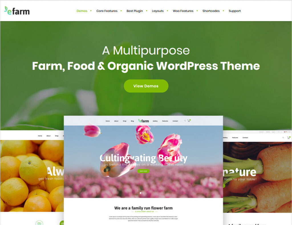 EFarm Multipurpose WordPress ECommerce Theme
