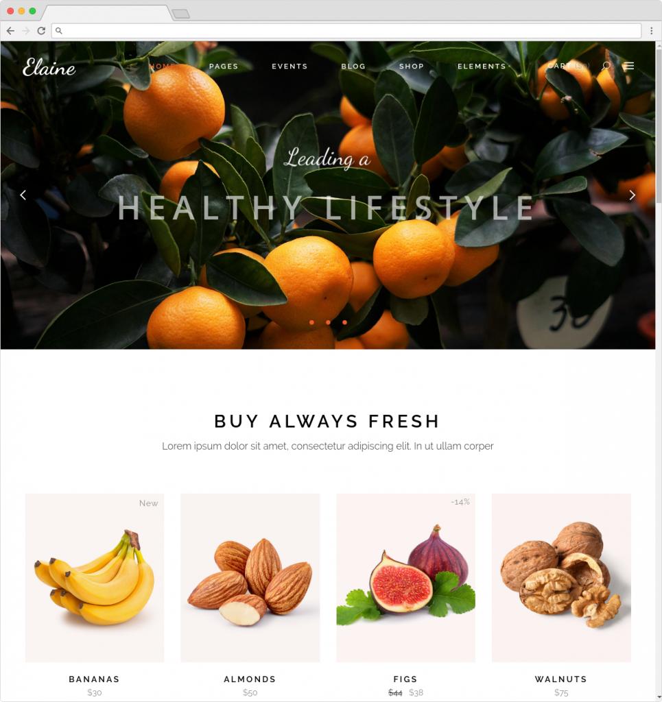 Elaine Healthy Lifestyle Blog And ECommerce Theme