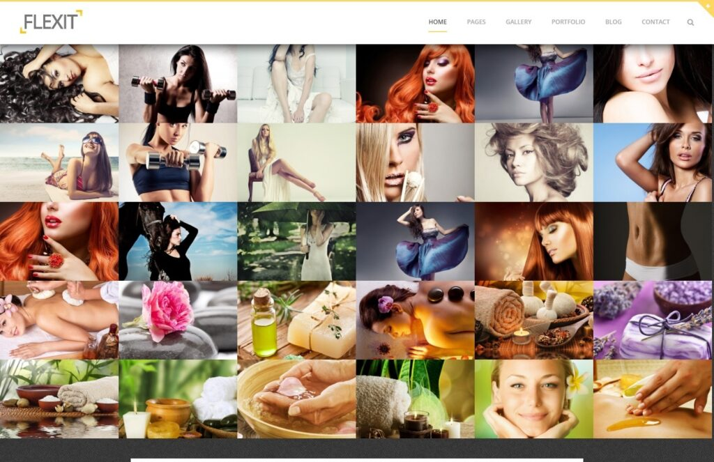 Flexit Bold Stylish Photo Portfolio Theme