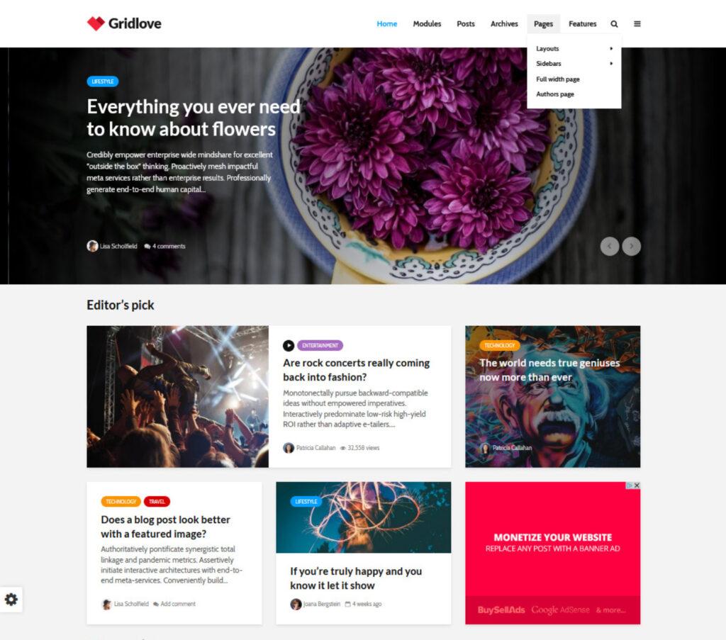 Gridlove Affiliate Marketing WordPress Themes