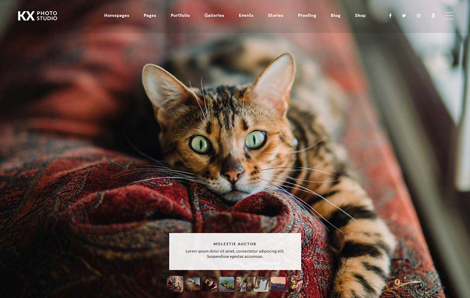 Kinatrix Full Screen Photography Theme for WordPress