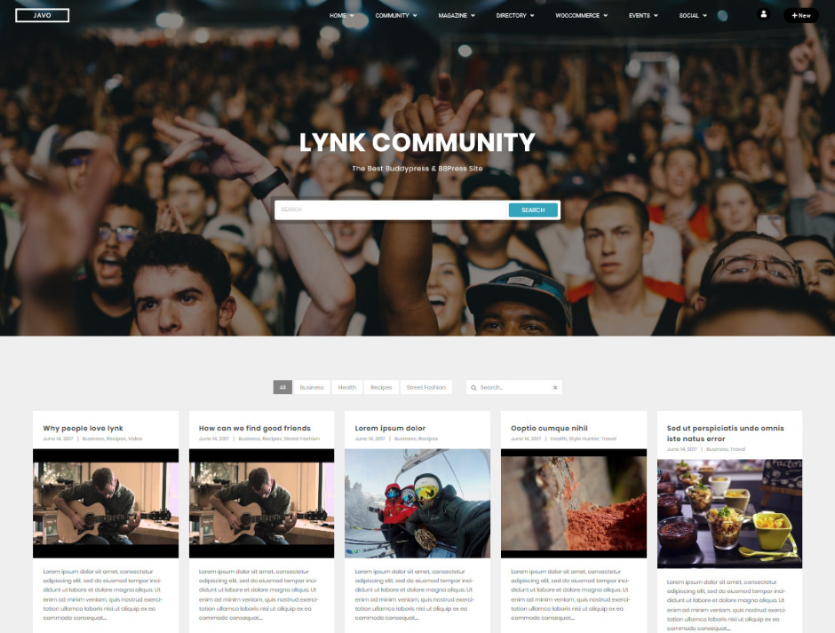 Lynk Social Networking and Community WordPress Theme