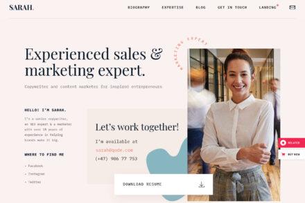 MyCareer WordPress vCard and Resume Theme