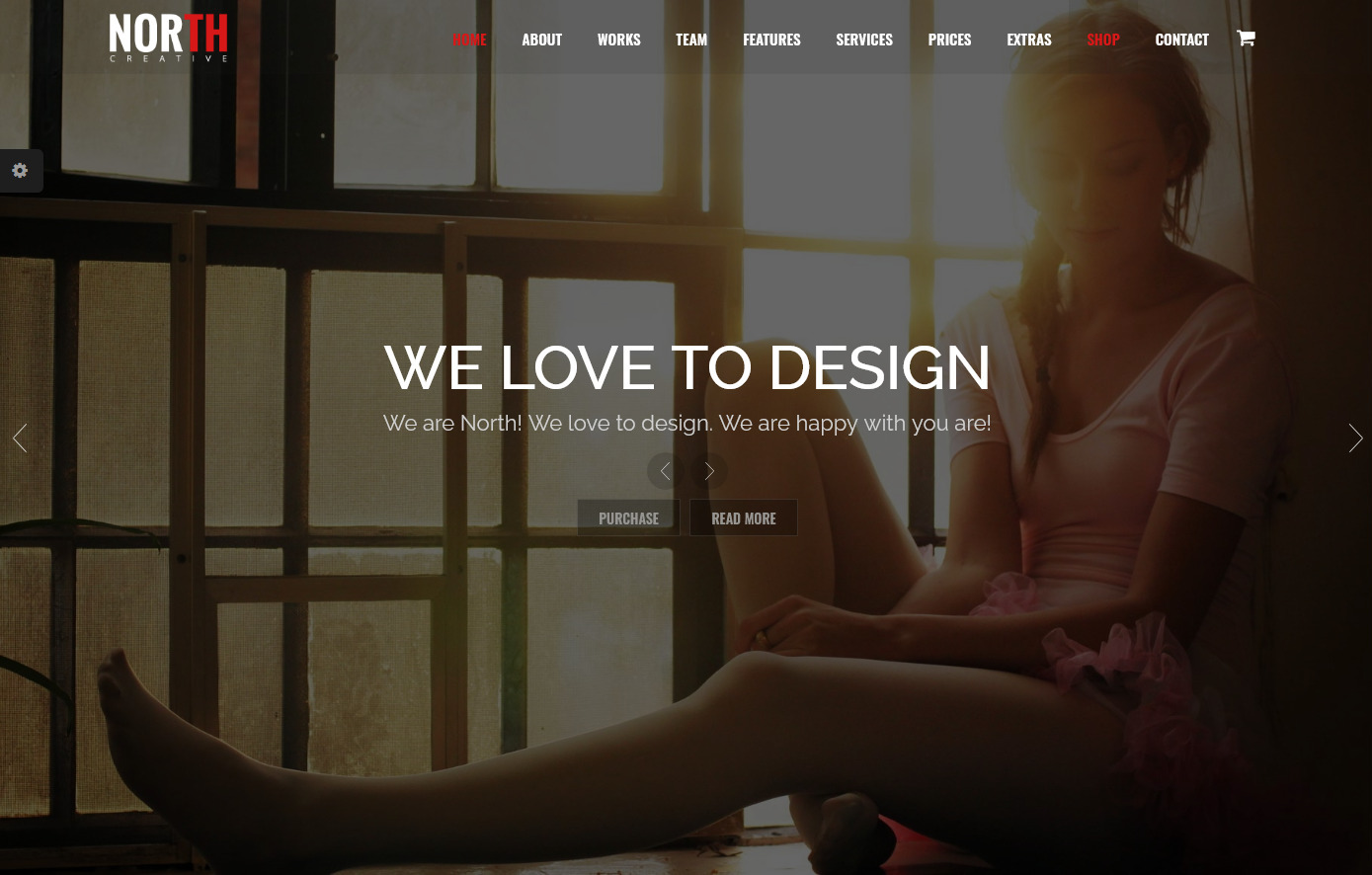 North One Page Parallax WordPress Theme