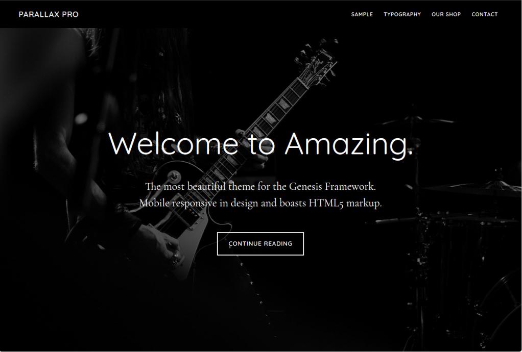 Parallax Pro Minimalist WordPress Landing Page Theme