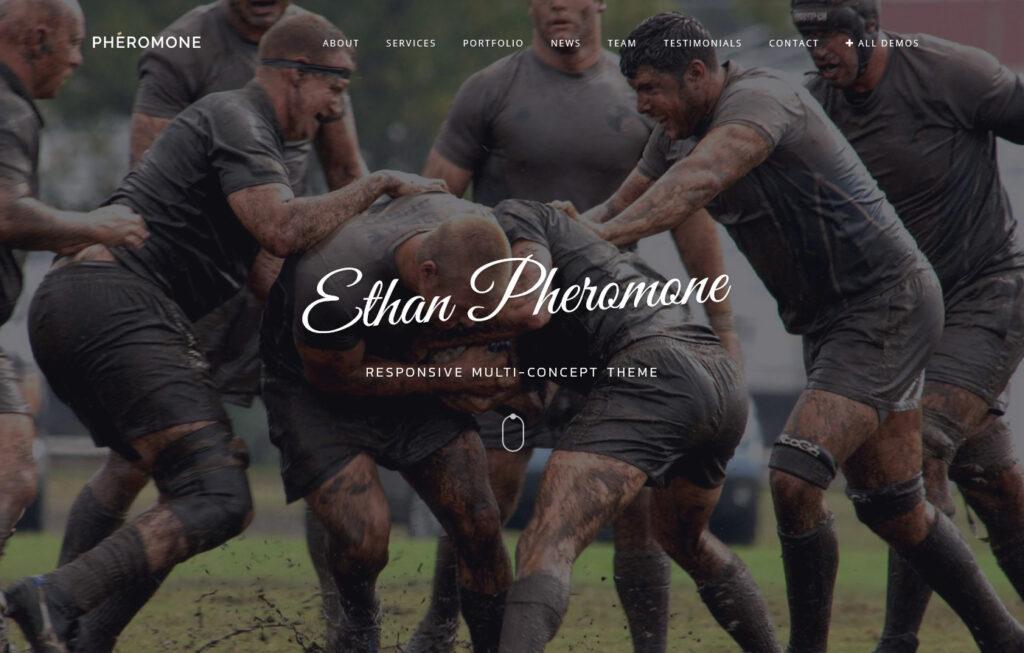 Pheromone Creative Modern WordPress Theme