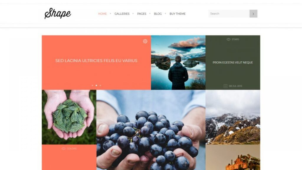 Shape Industry Standard WordPress Grid Themes x