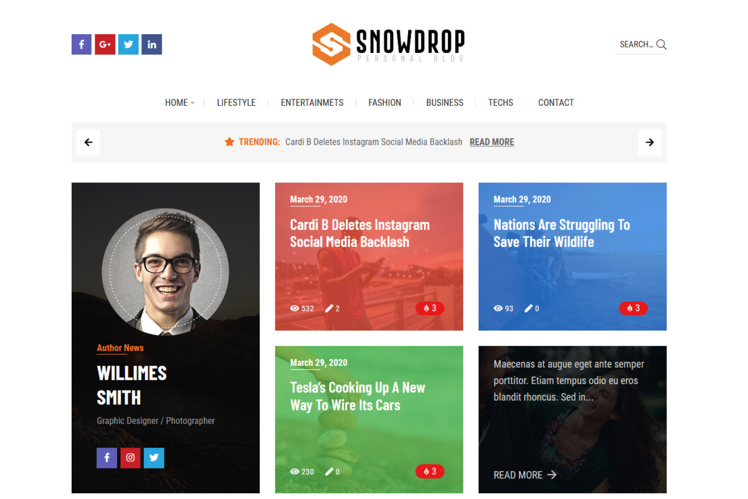 Snowdrop Clean Personal Blog and Magazine Theme