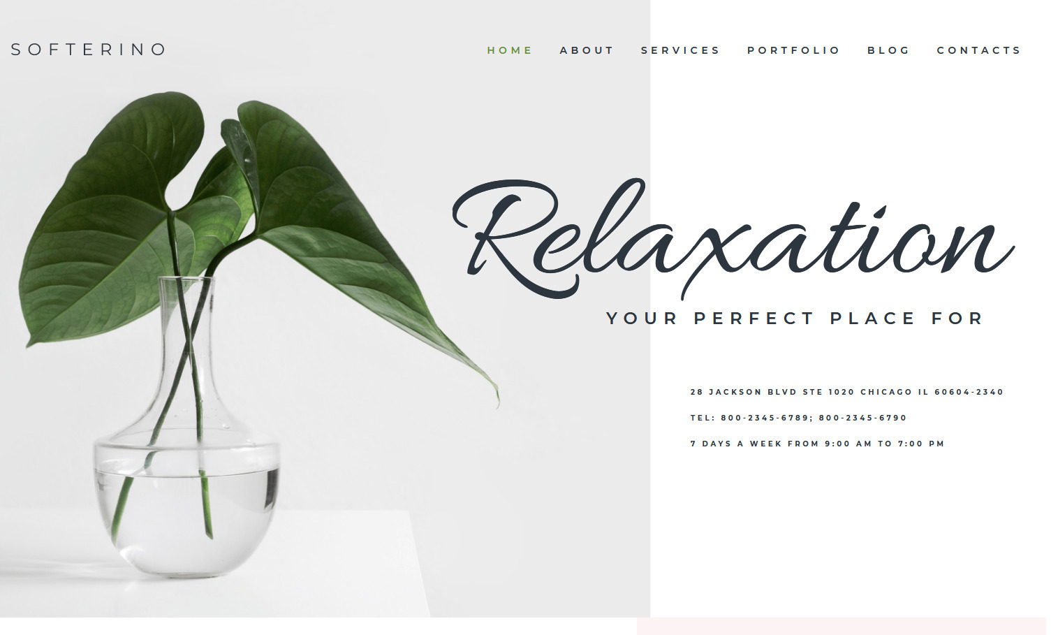 Softerino WordPress Spa and Salon Themes