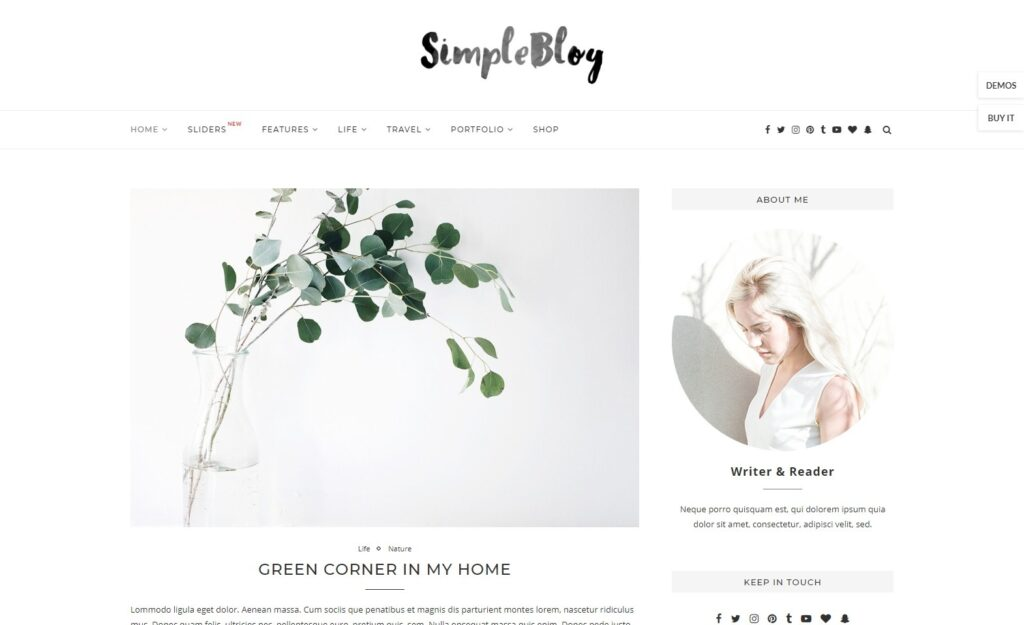 Soledad Simple WordPress Personal Blogging Theme
