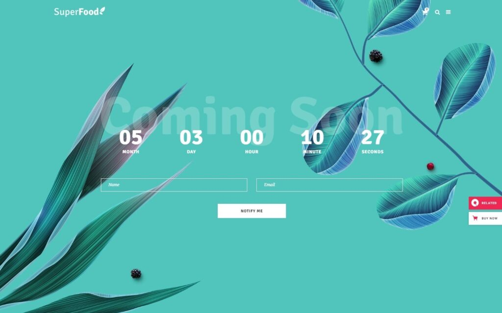 Superfood WordPress Theme for Coming Soon Pages