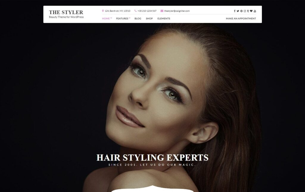 The Styler Fashionable Boutique and Blog Theme