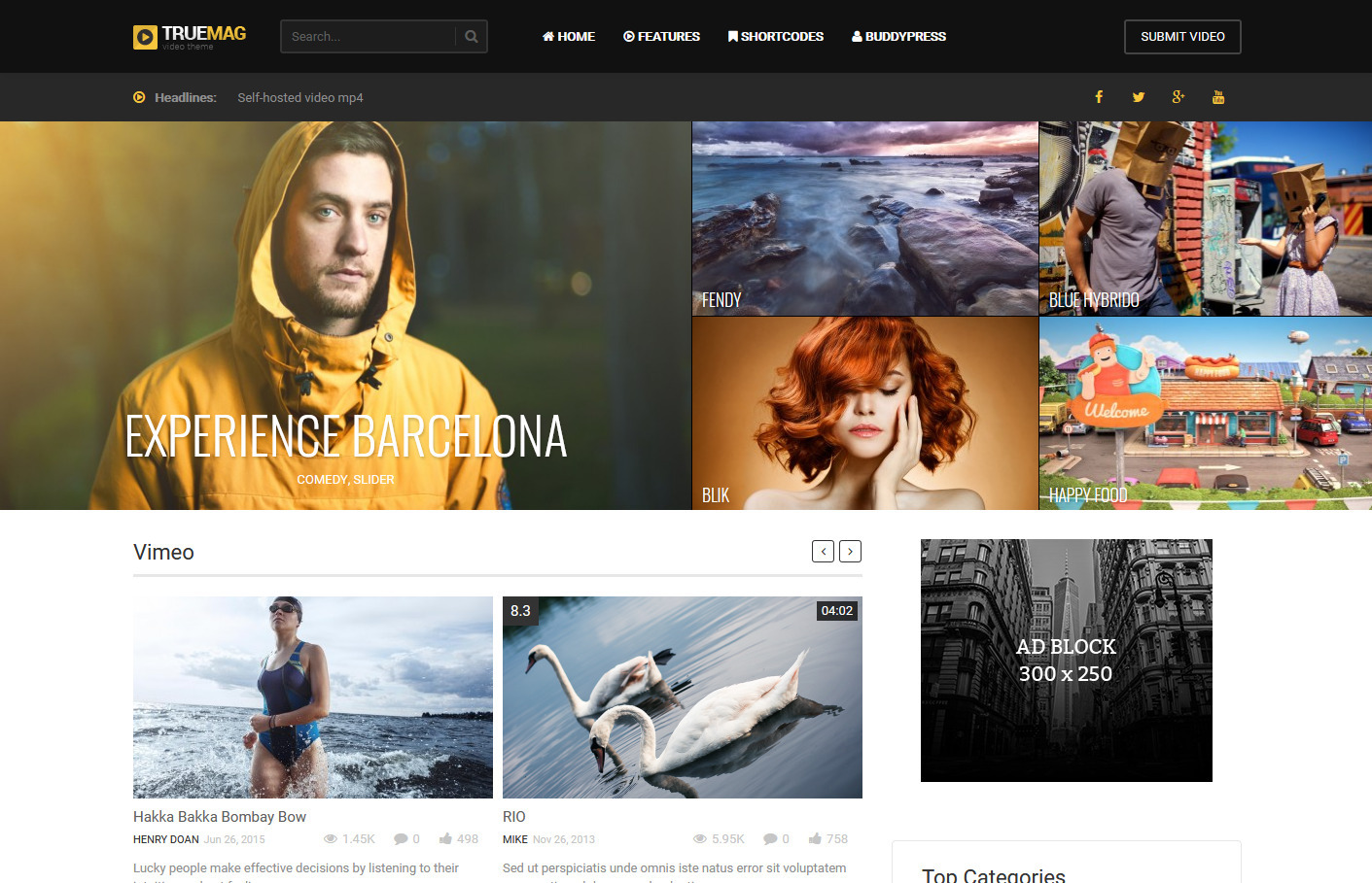 True Mag WordPress Theme for Video Magazines