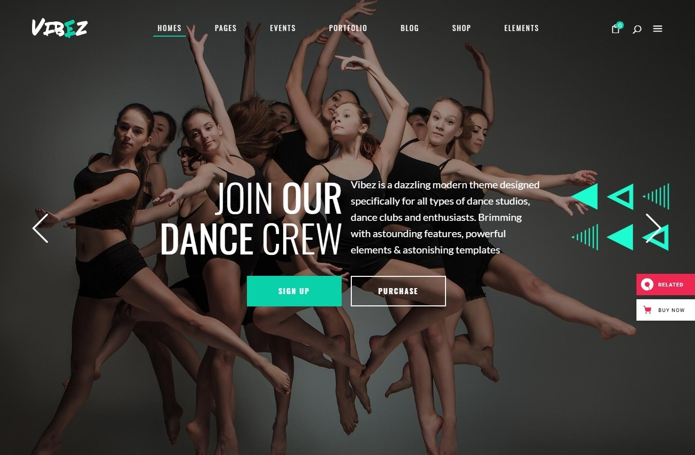 Vibez Dynamic Theme for Dance Studios and Instructors