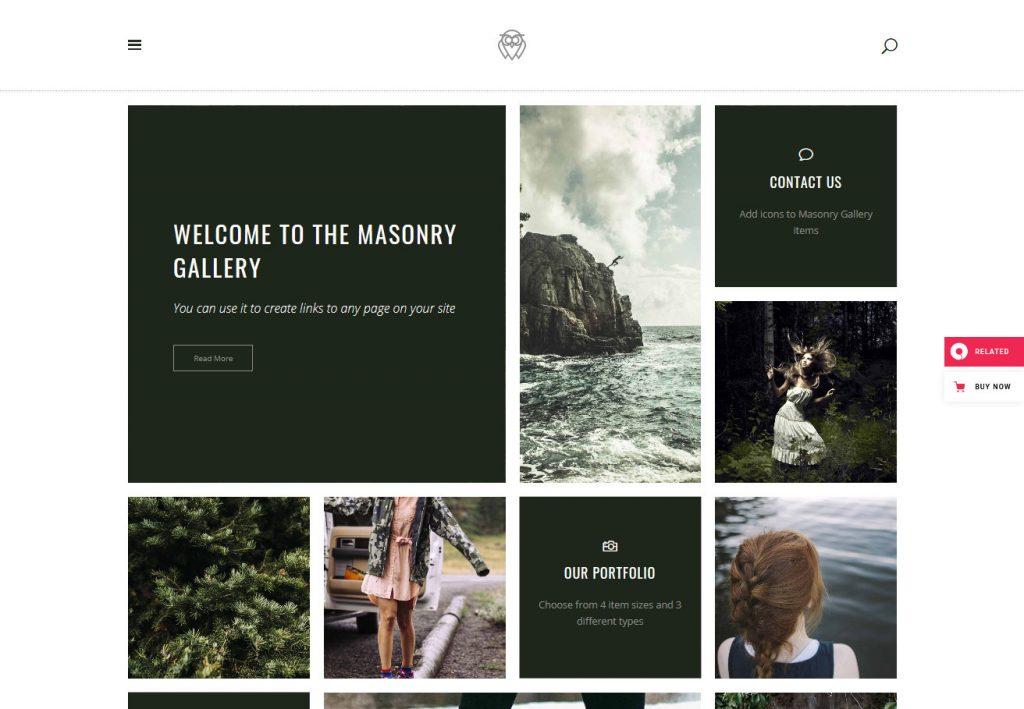 Vigor WordPress Theme