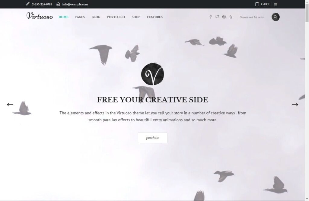 Virtuoso Theme for Creative Art Businesses