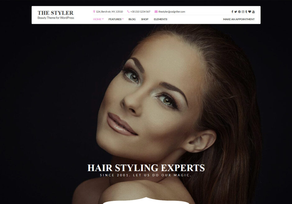 WordPress Beauty Themes
