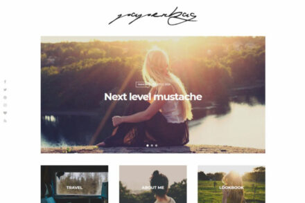 WordPress Journal Themes