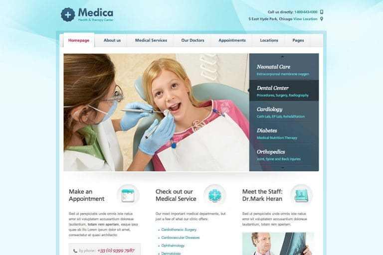 WordPress Medical Themes