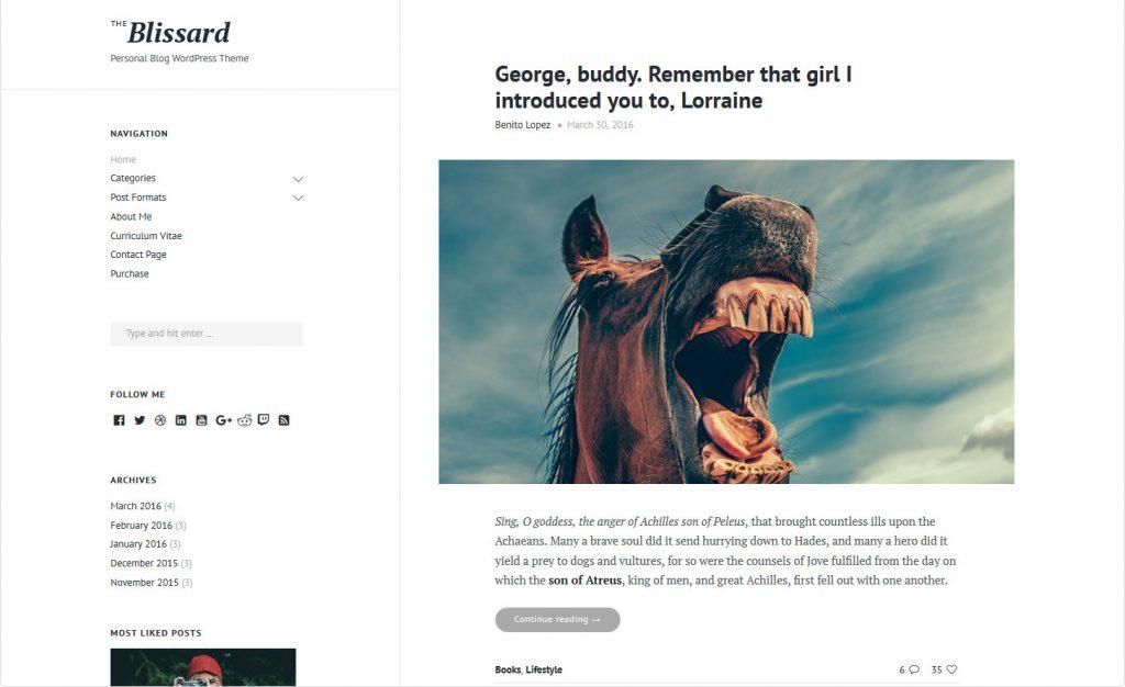 WordPress Modern Themes