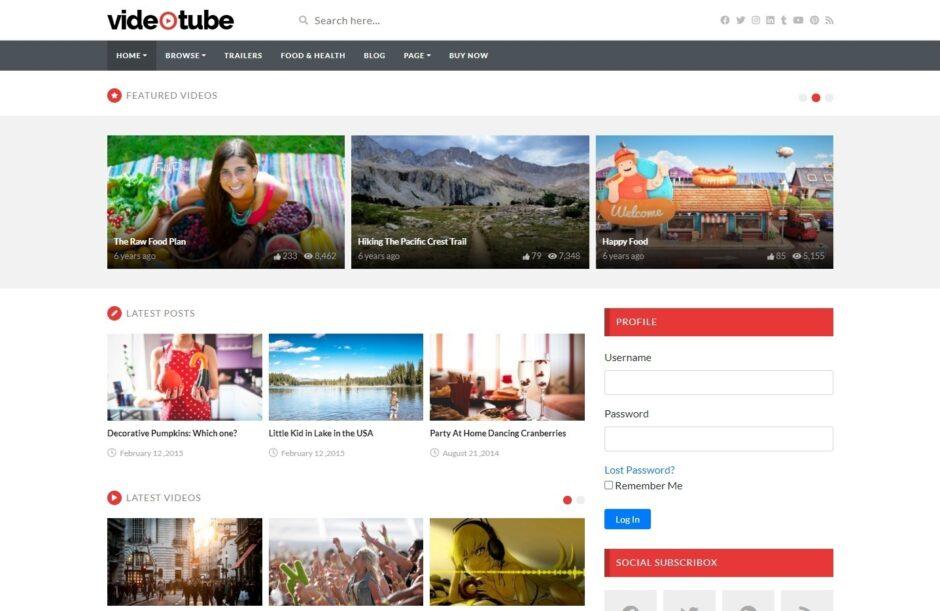 YouTube Clone WordPress Themes