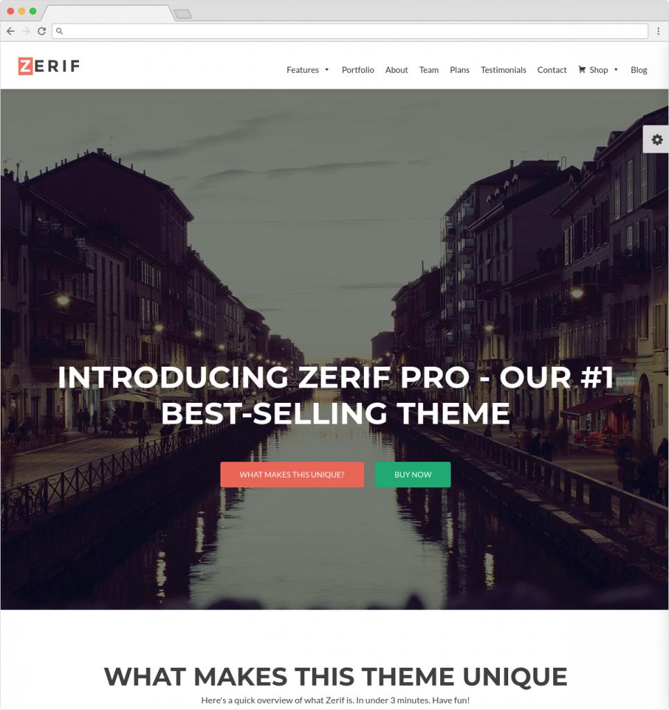 Zelle Pro Beautiful WordPress Portfolio And WooCommerce Template