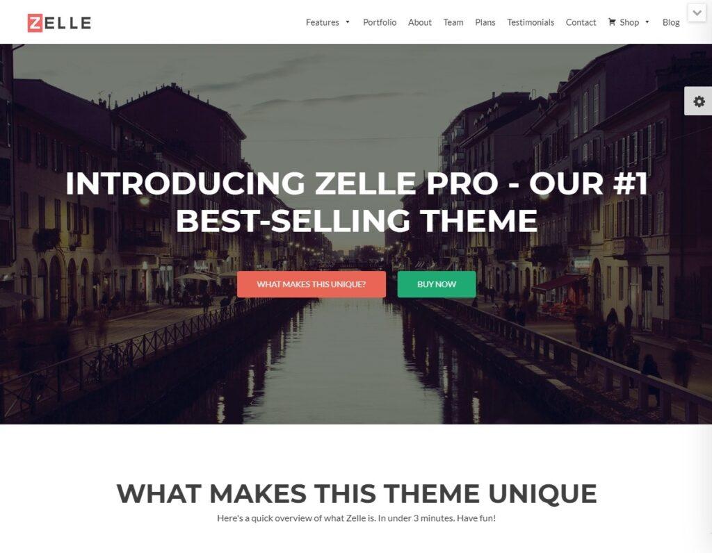 Zelle Pro Clean Crisp Squeeze Page WordPress Theme