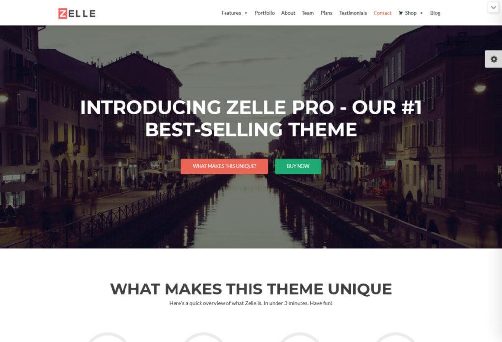 Zelle Pro Creative WP eBooks Theme