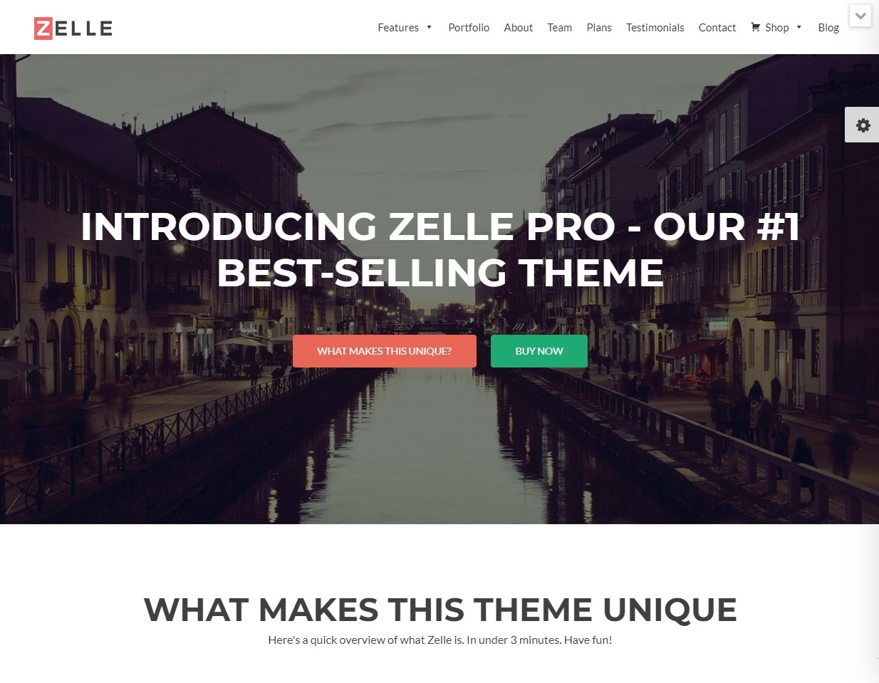 Zelle Pro Tech Startup and Support WordPress Themes