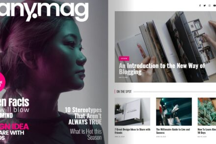 Anymag Magazine Style WordPress Blog