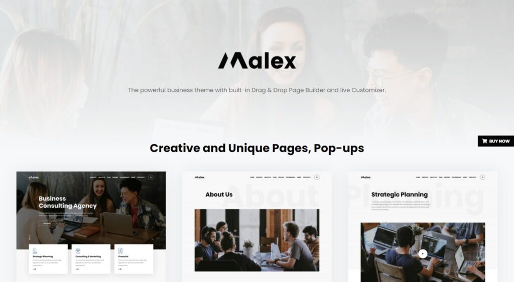 Malex Business Consulting Agency WordPress Theme