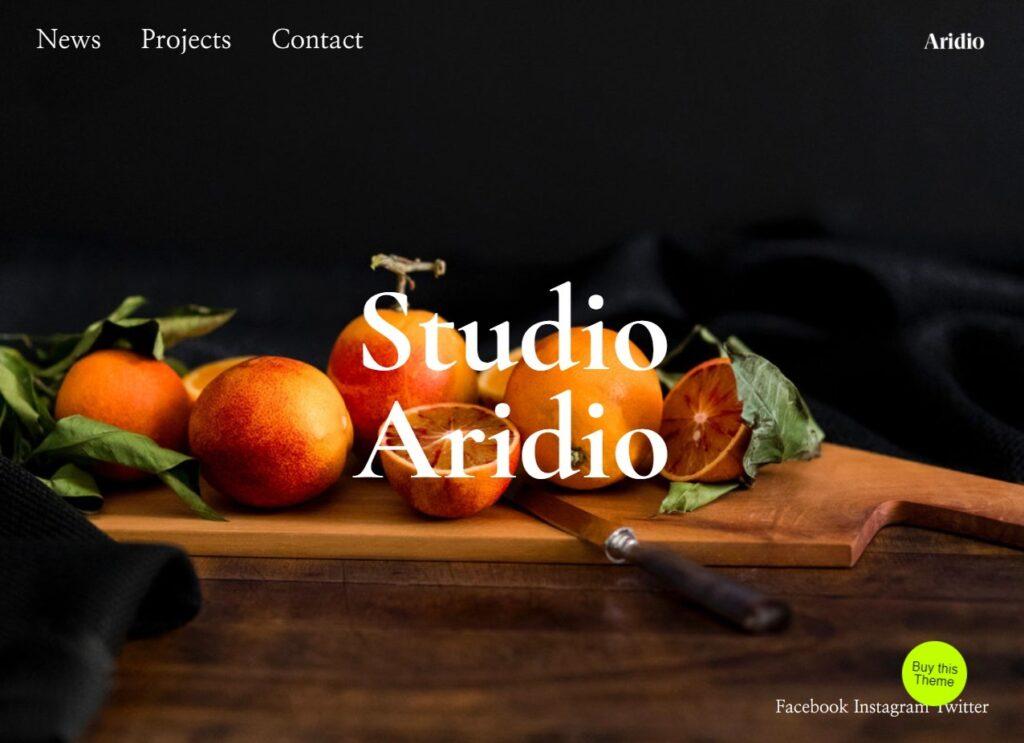 Aridio WordPress Theme Demo Themes Kingdom