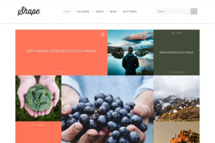 Portfolio Grid WordPress Themes