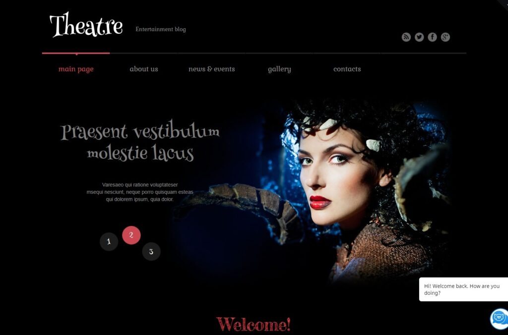 heater Responsive WordPress Theme WordPress Theme