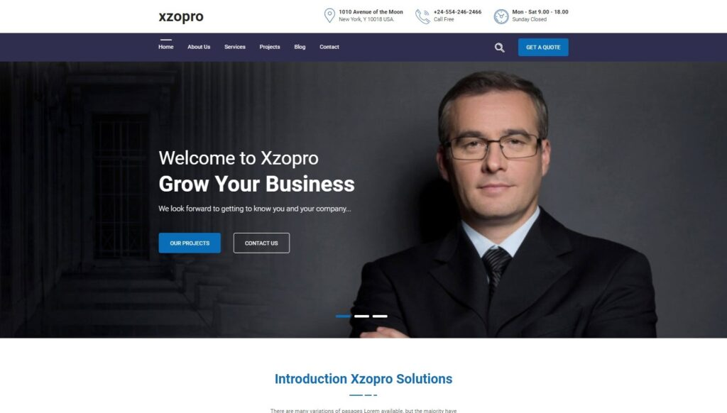 Xzopro Finance And Business WordPress Theme Preview ThemeForest