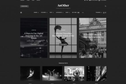 Contemporary WordPress Themes