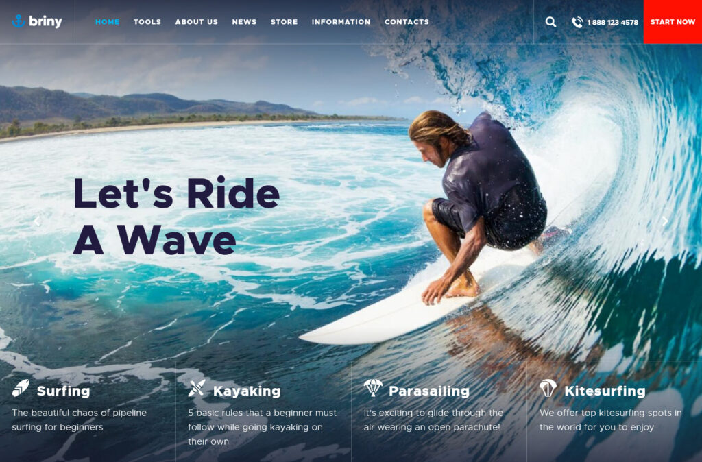 Briny Surfing Related WordPress Theme