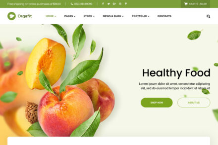 Orgafit Organic and Health WordPress Theme