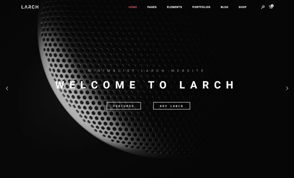 Larch WordPress Theme for Newsletters