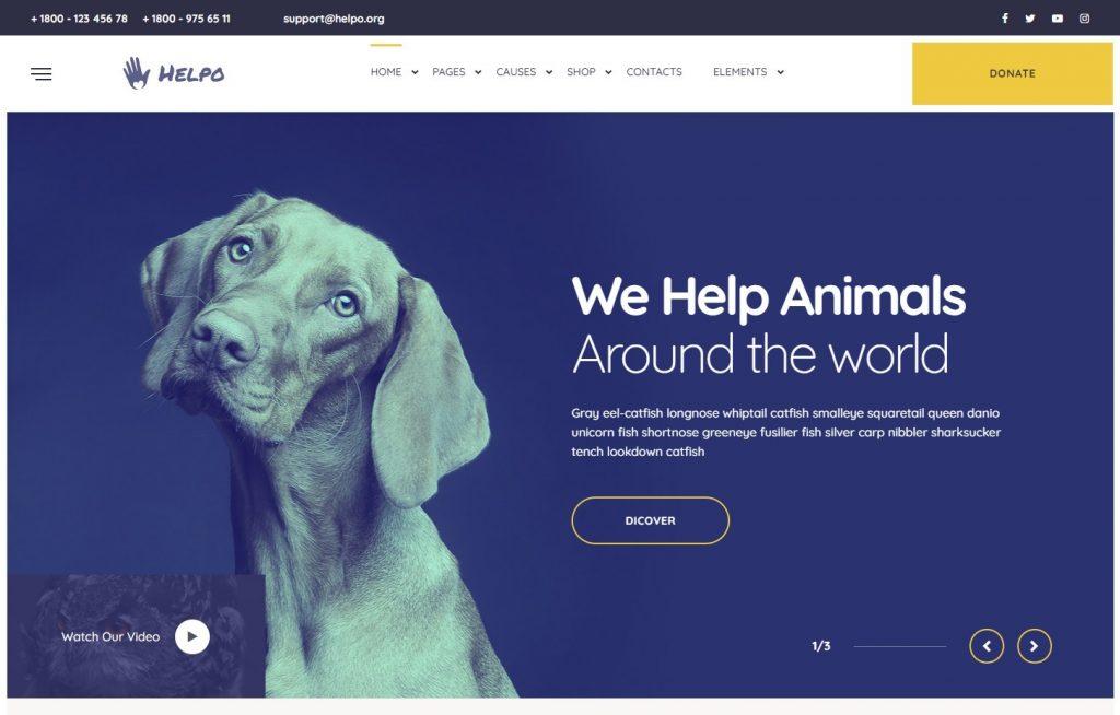 Helpo Fundraising WordPress Themes