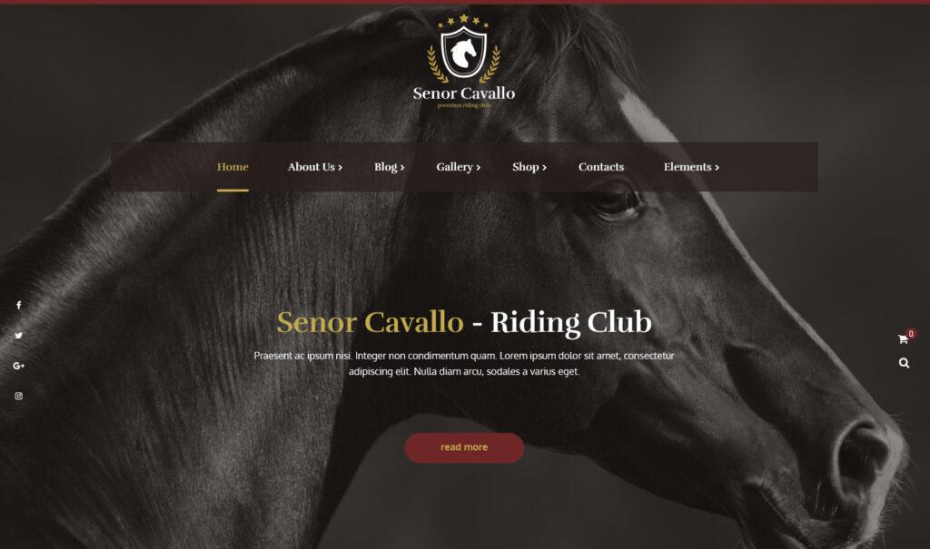 Senor Cavallo WordPress Theme for Equestrian Websites